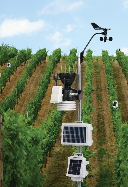 EnviroMonitor System in Vineyard