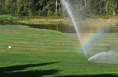 turf_watering