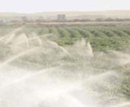 Irrigation image